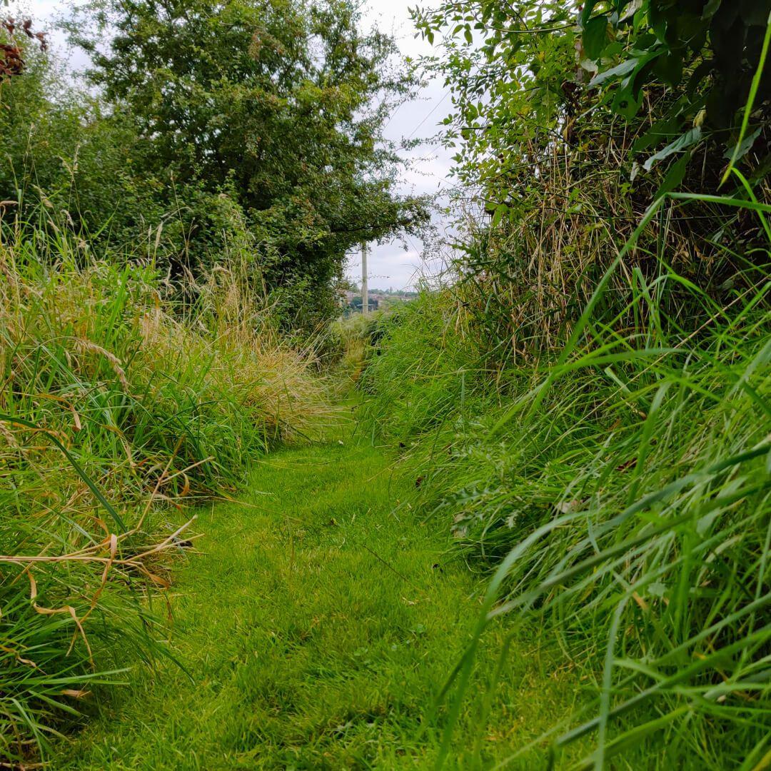 Rodley Nature Reserve path