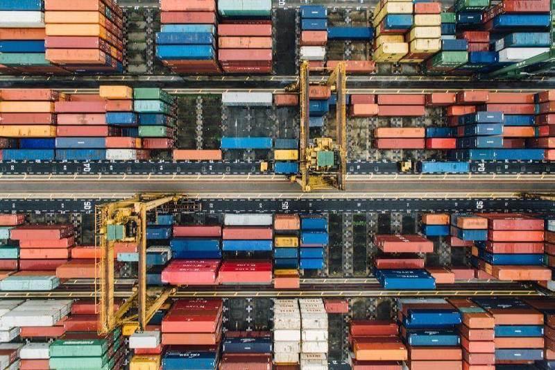 Cannabis Import & Export Trade