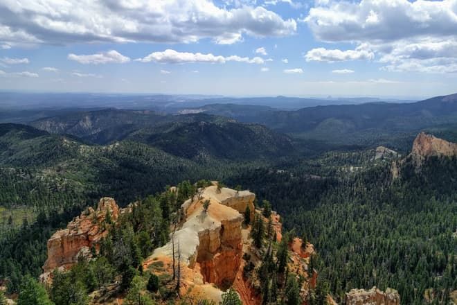 The view down an exceptionally wide fin of rock extending from the South Wall of Bryce Canyon. Beyond it, a pine forest stretches out to the horizon.