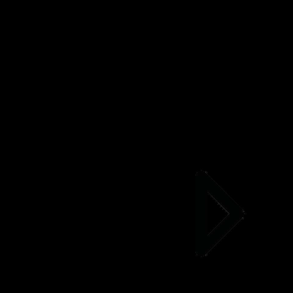 Document type video
