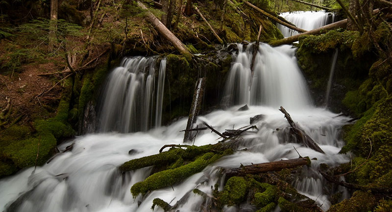Hidden off-trail waterfall in Washington State's Gifford Pinchot National Forest