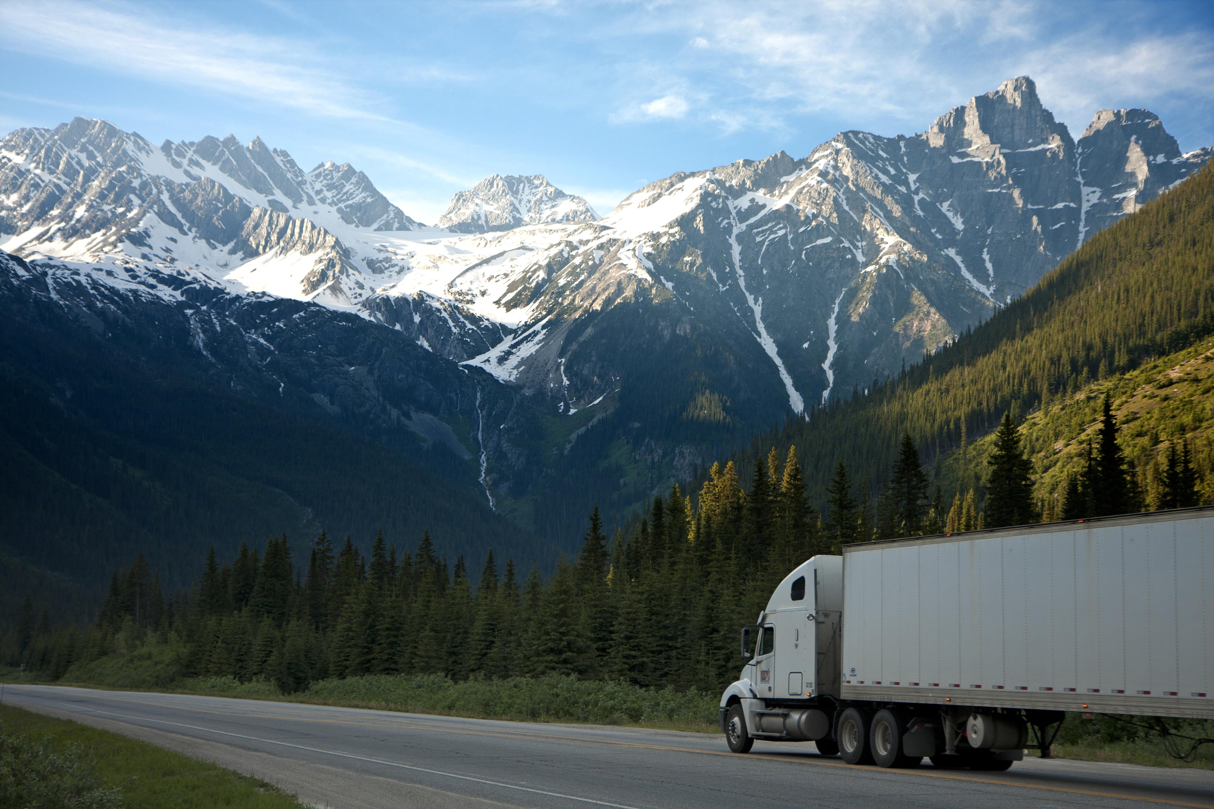 Dvir trucker
