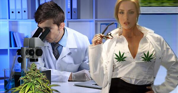 scientists-prove-marijuana-improves-sex-for-men-and-women