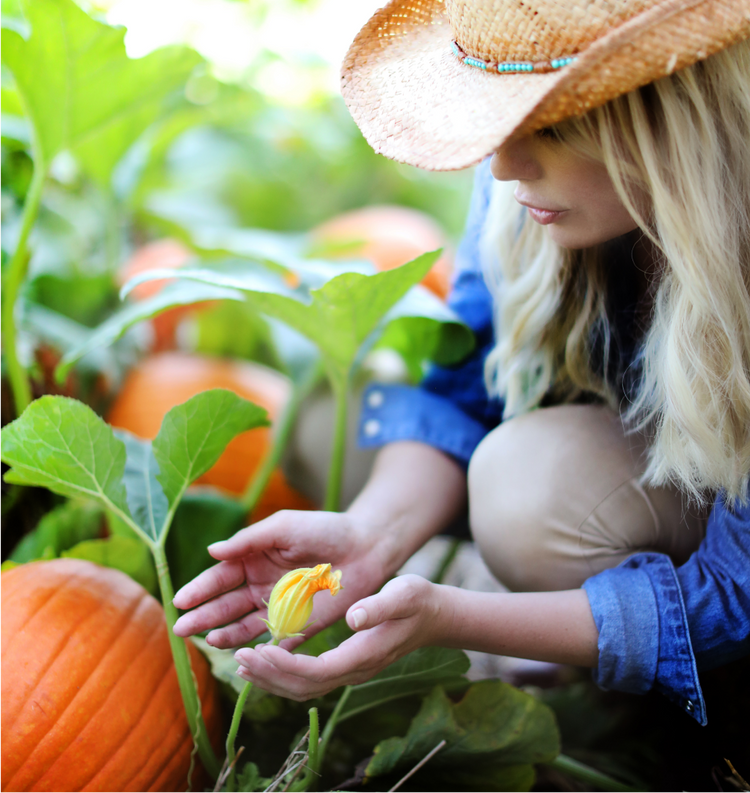Sarah's Homegrown Produce'