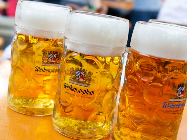 Raising a stein of beer after saying Prost!