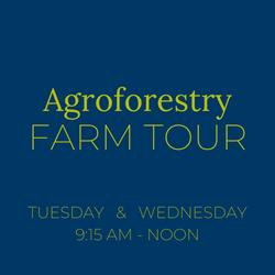 Experiential Farm Tour w/ Farm Fresh Lunch