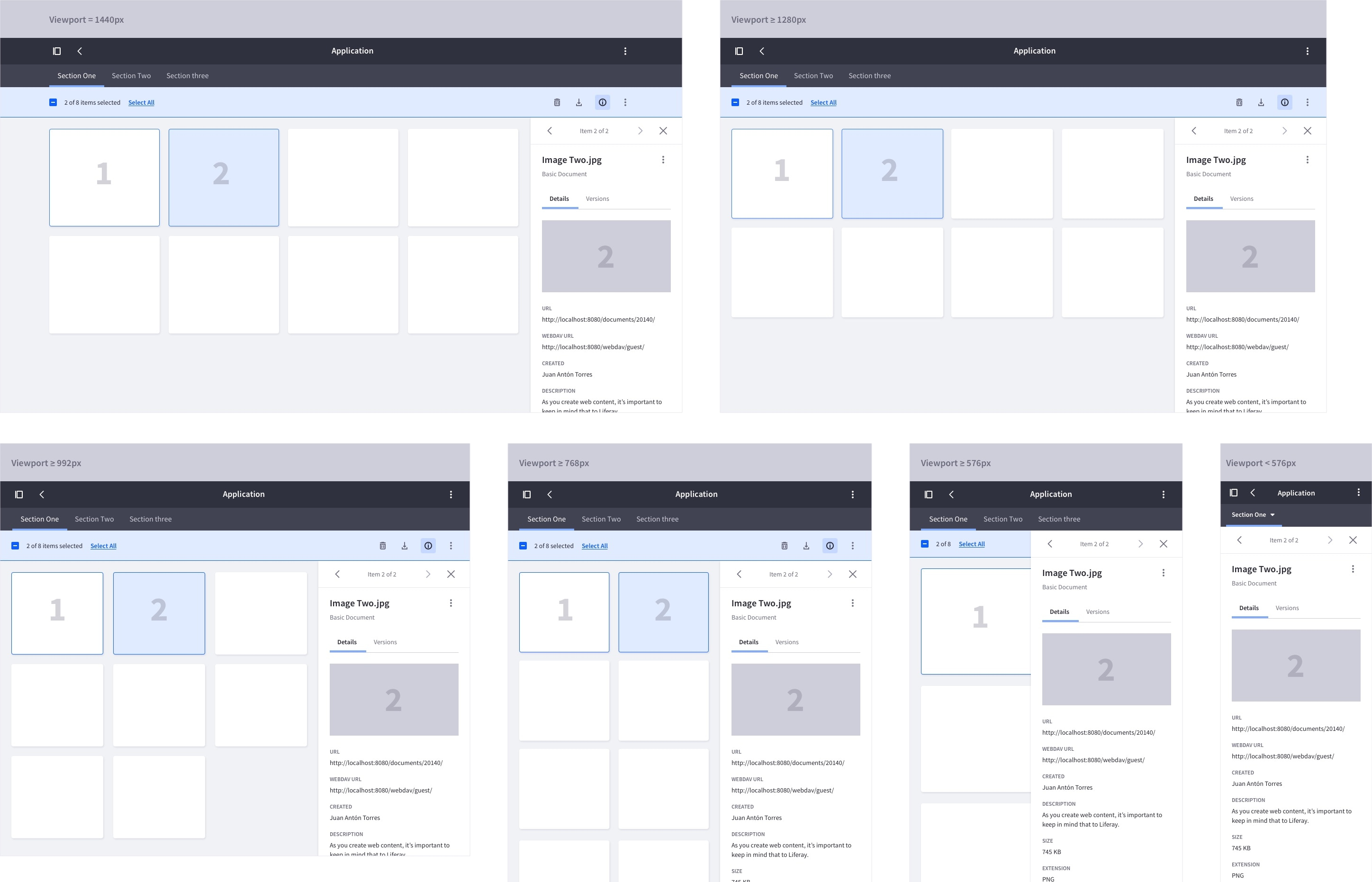 responsive schema of the card view with the panel open