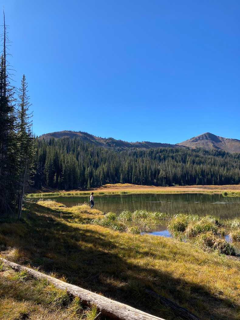 Bonny Lake
