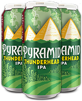 Thunderhead 4-Pack 16 oz. Cans