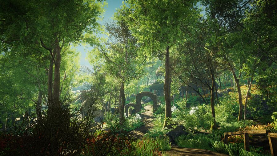 A sunny pathway through a forest.