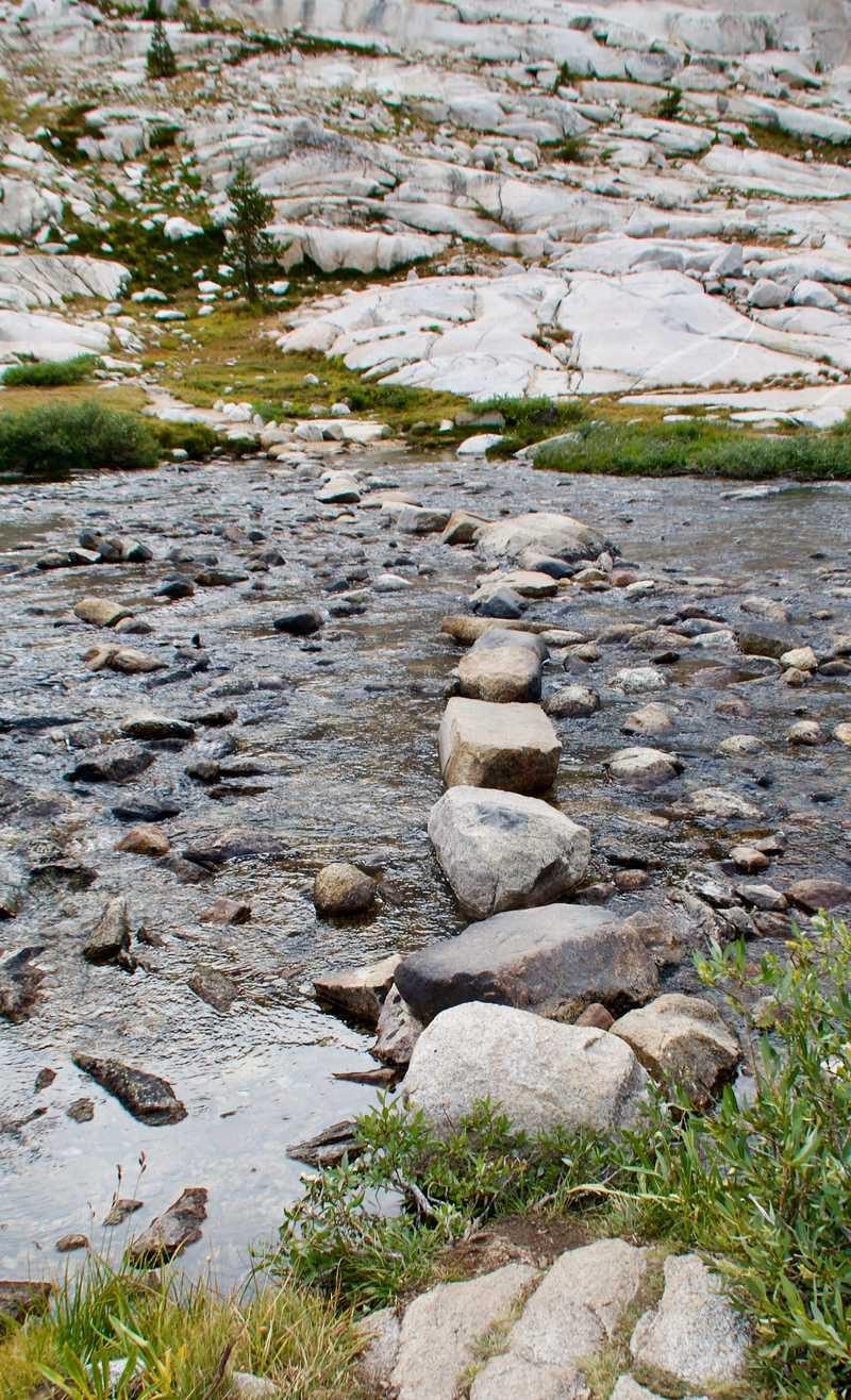 Stepping stones across Evolution Creek