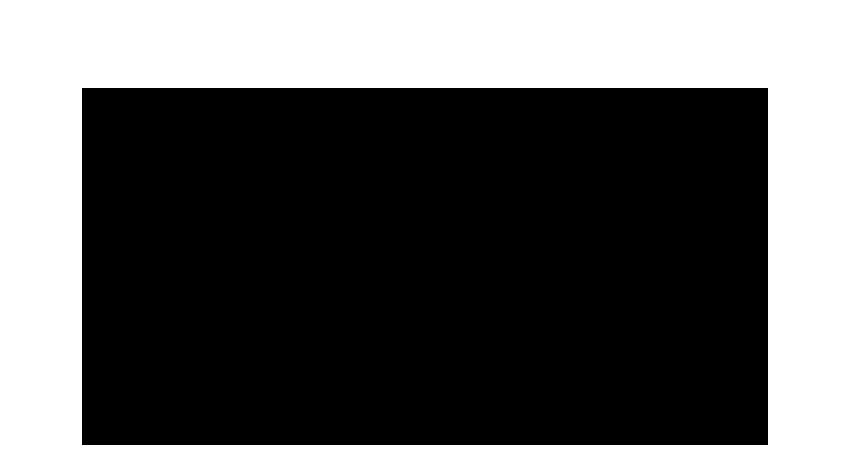 205 Capital logo