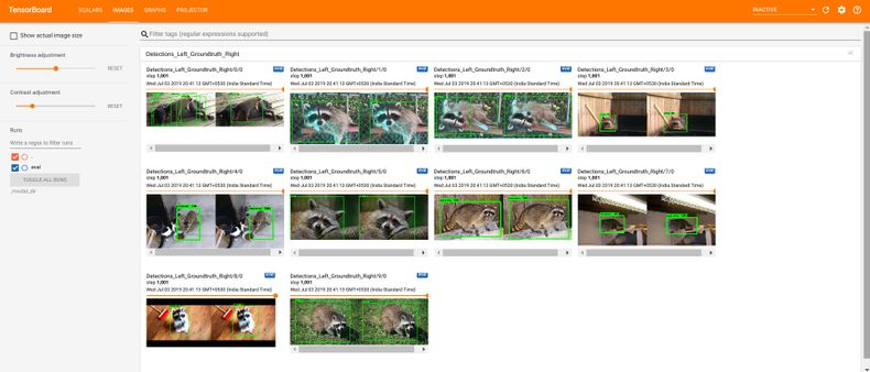 annotation image raccoons2