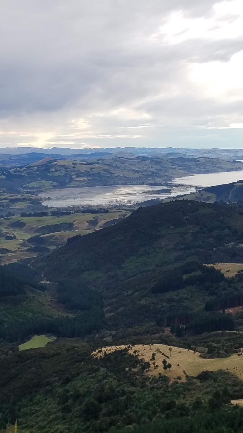 View toward North