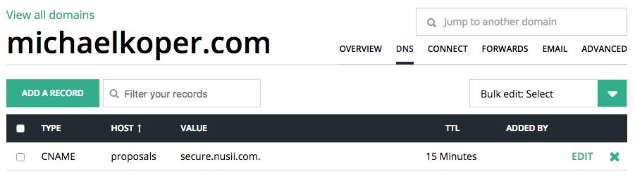 DNS Settings michaelkoper.com