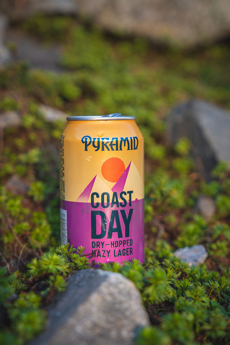 Coast Day can in the Moss