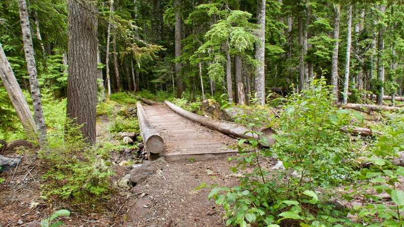 A bridge at Chetwot Creek