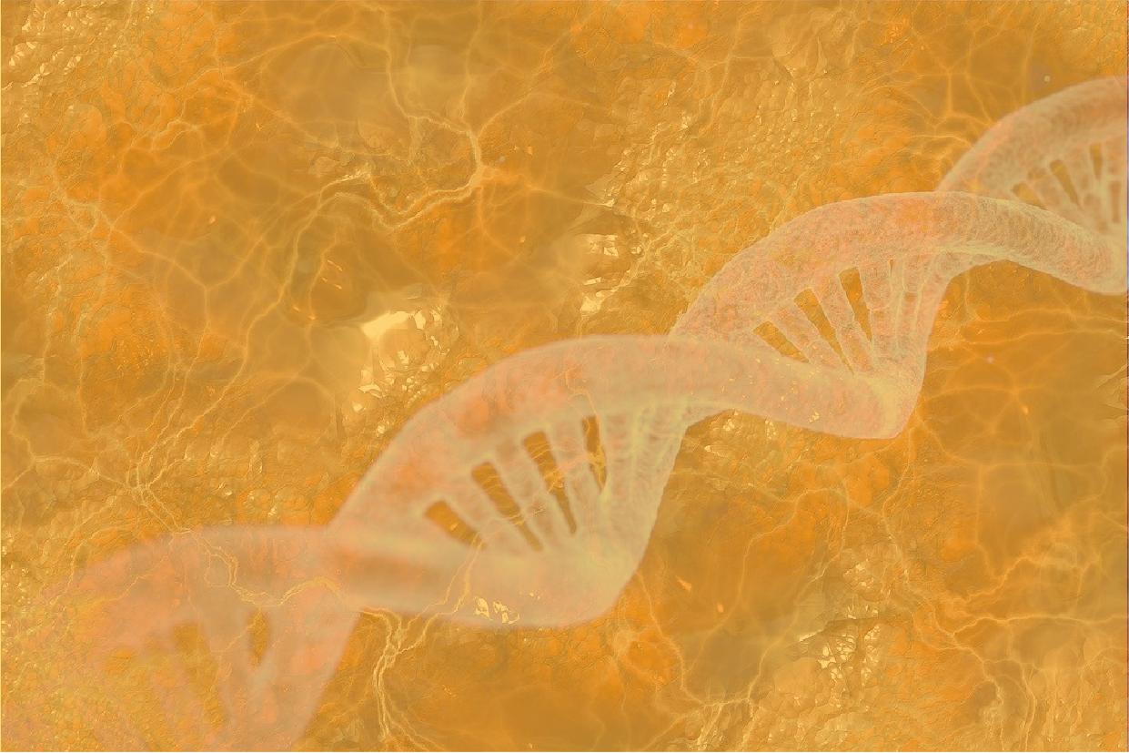 The Glimpse (Genomics)