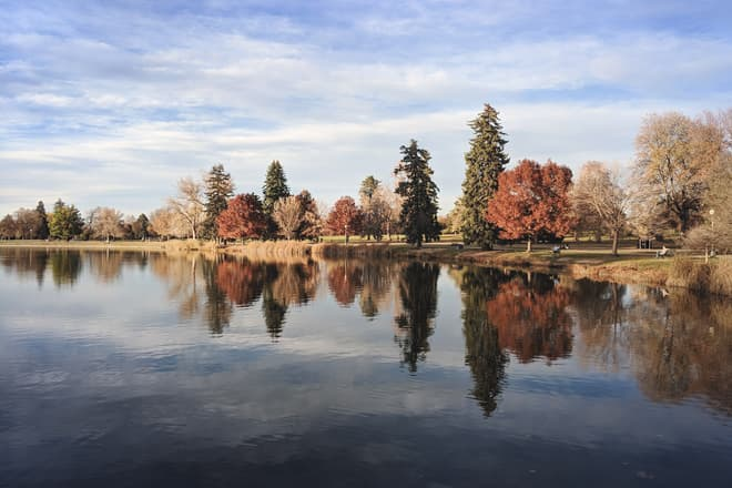 The view across a city lake. On the far side stand a mixture of pine trees and red- and yellow-colored deciduous trees.