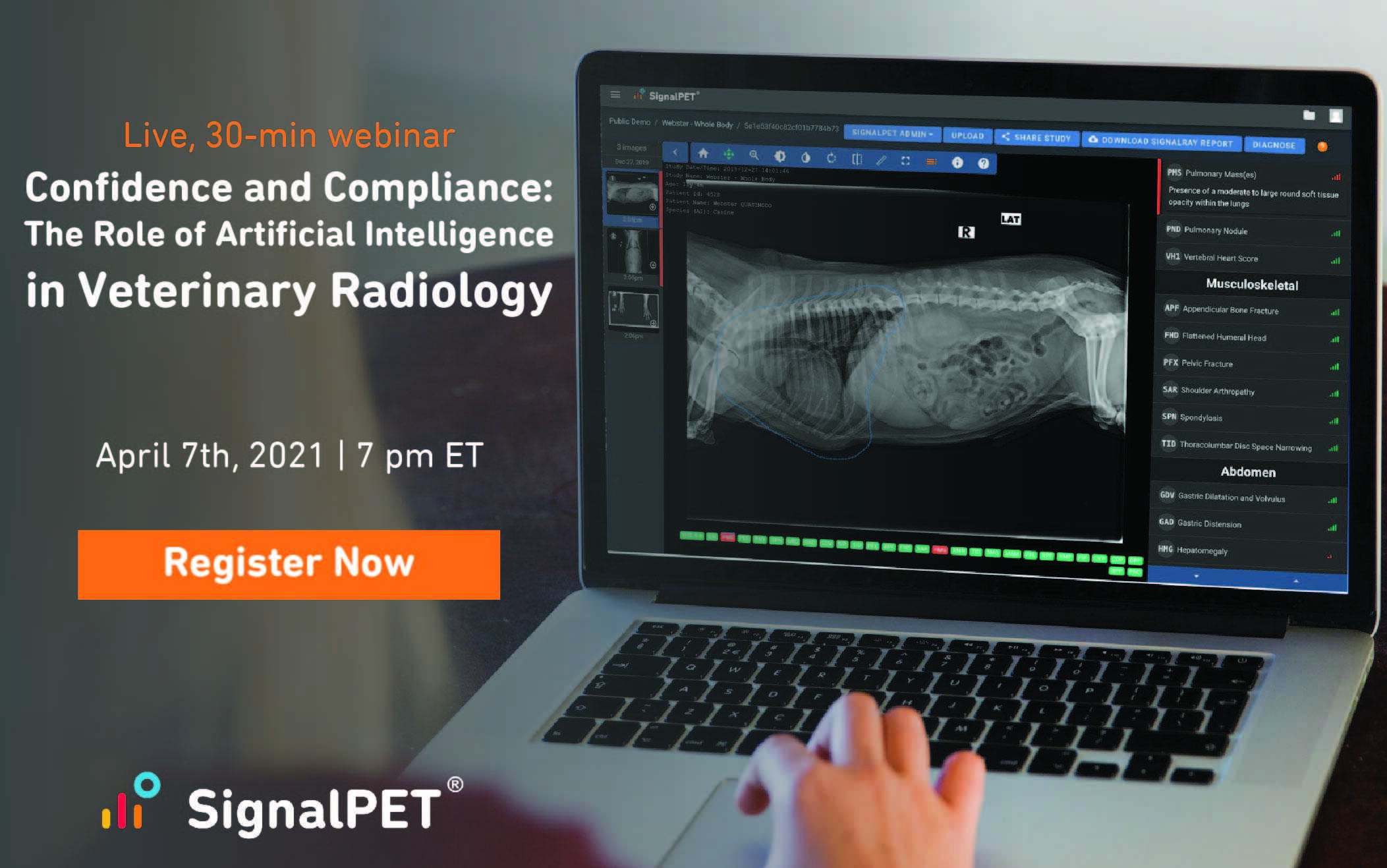 Artificial Intelligence in Veterinary Radiology Webinar