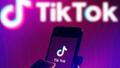 featured image thumbnail for post Funcionamiento del Algoritmo de TIk Tok