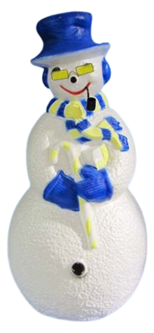 Sunshine Snowman photo