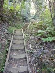 Lots of steps