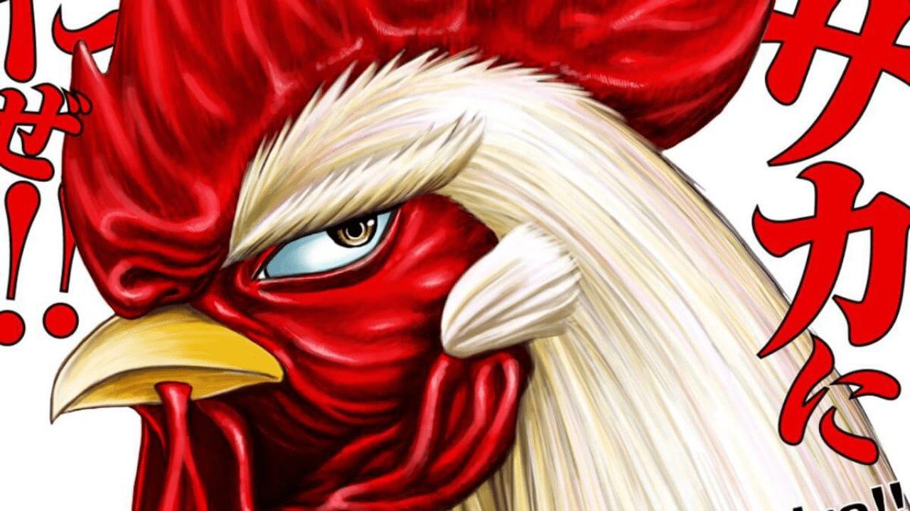 Conheça Rooster Fighter de Syu Sakuratani