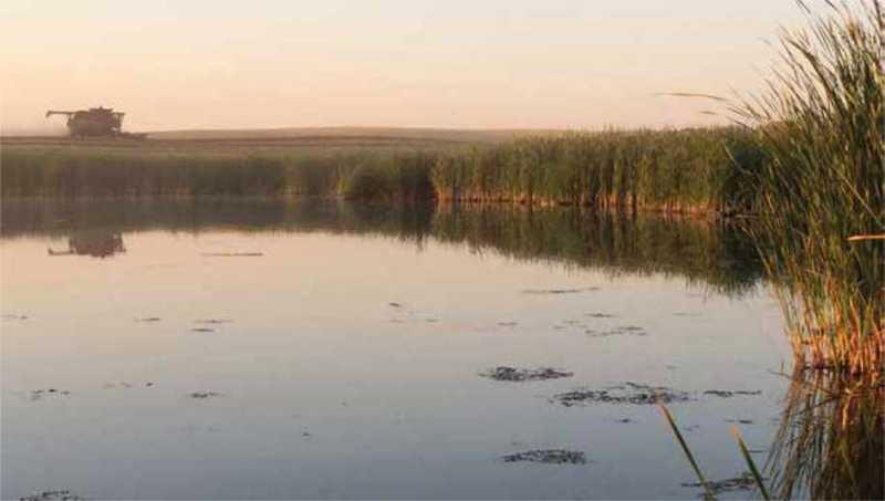 Saskatchewan marsh with a machine in the background