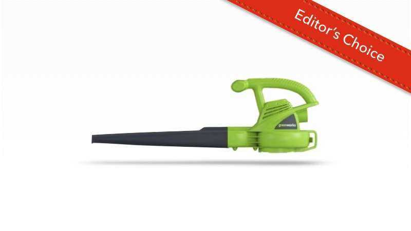 Greenworks Single Speed Blower