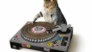 Turntable Scratching Post