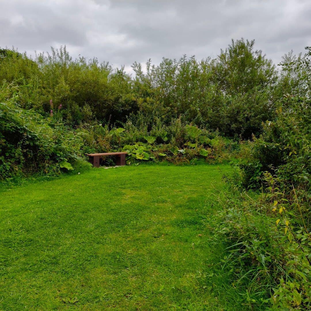 Rodley Nature Reserve field
