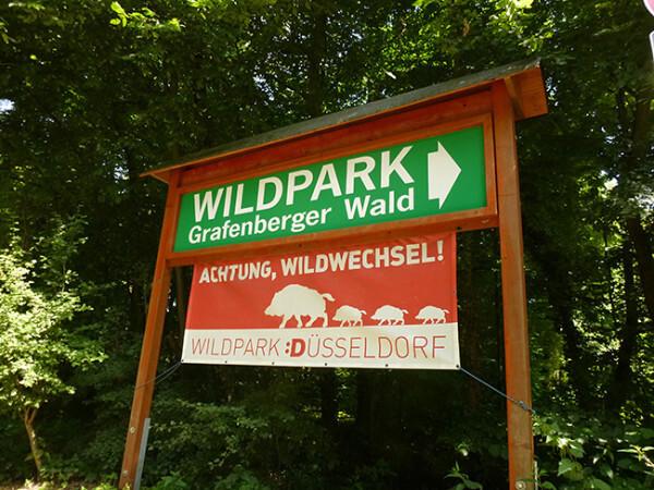 Wildpark в Дюссельдорфе