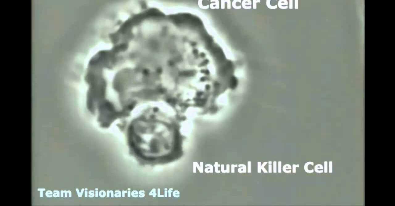 Hücre Bölünmesinin Kanserle İlişkisi