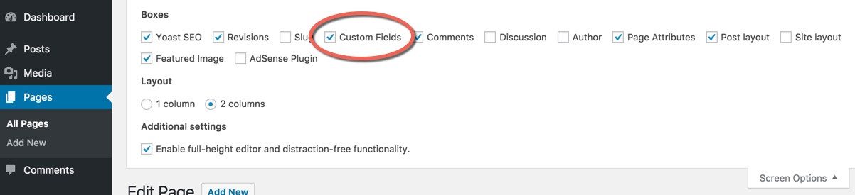 How to show custom field editor in WordPress.