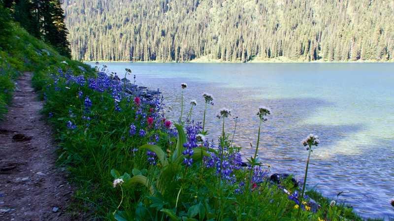 Large Dewey Lake