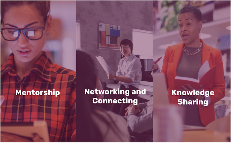 Research Recommendations: Mentorship, Networking, Knowledge Sharing