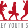 Napa Valley Youth Symphony logo