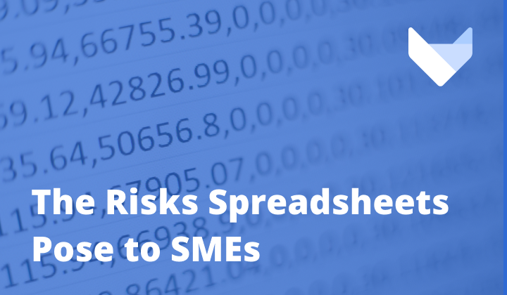Playing With Fire: Why SMEs Continue to Use Spreadsheets