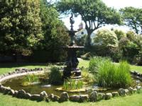 fountain pond wildlife