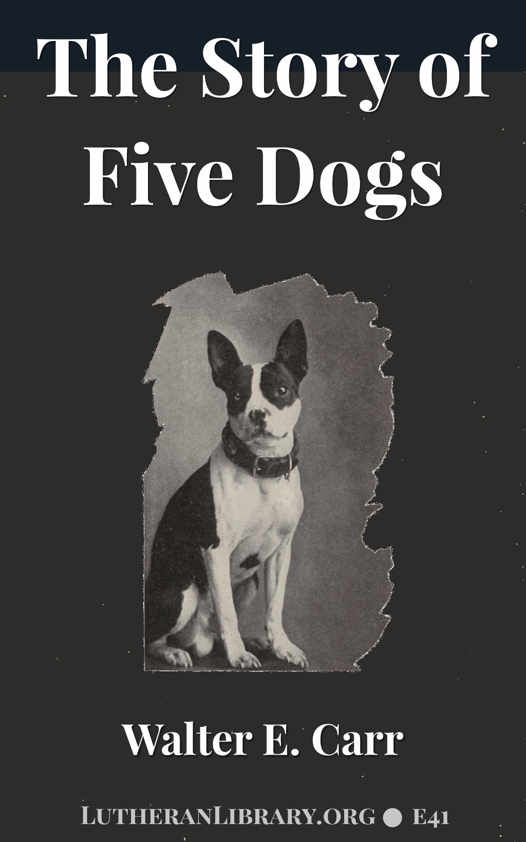 The Story of Five Dogs by Walter E. Carr