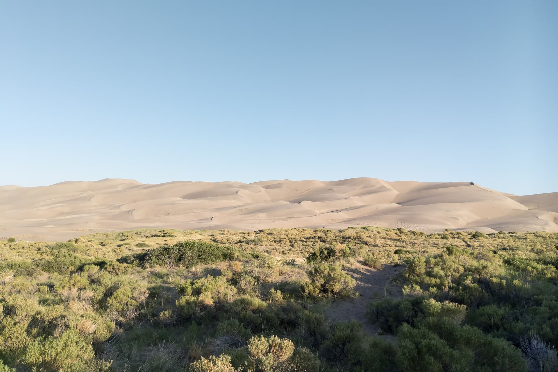 High desert scrubland ends abruptly in a field of high sand dunes.