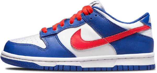 Nike Dunk Low GS
