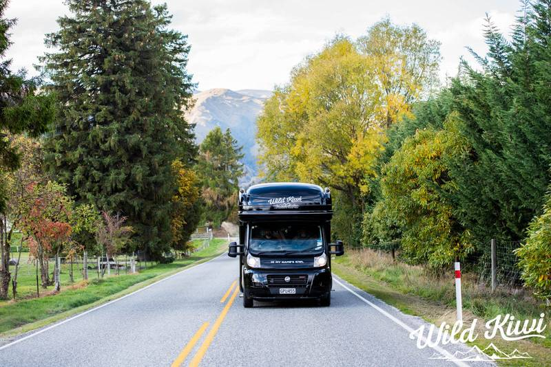 How To Decide Which Wild Kiwi Tour Is The Right One For You