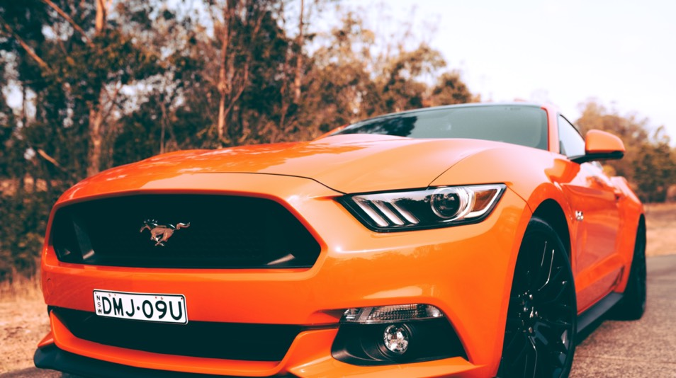 Angus Gray Mustang unsplash photo