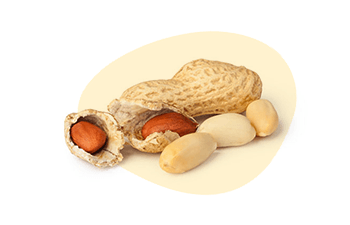 Peanut is one of the EU 14 Major Food Allergens, Erudus lets you easily see if a product contains this or any of the allergen ingredients