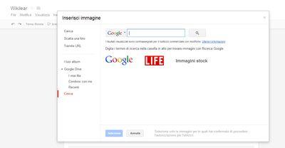 Moduli Google - Cerca immagini