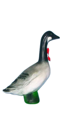 Christmas Canada Goose photo