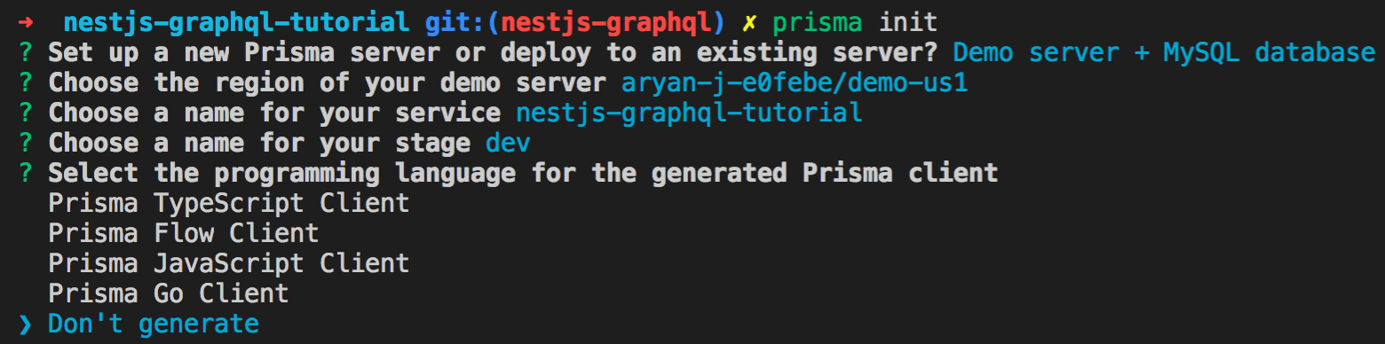 Photo of client choices Prisma CLI provides