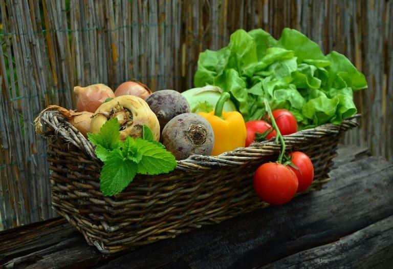 hyperactivity-in-children-they-need-vegetables